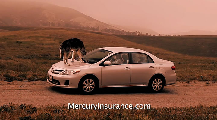 "Mercury Insurance ""Stranded"""